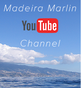 MMarlin Youtube